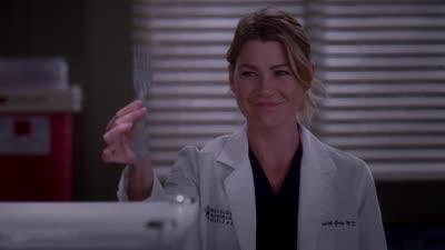 Grey s Anatomy • S10E08