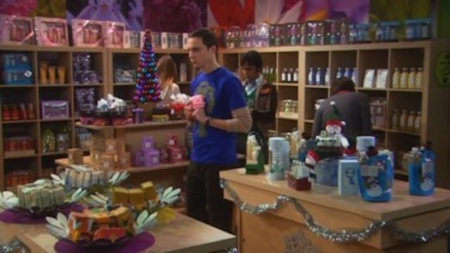 The Big Bang Theory • S02E11