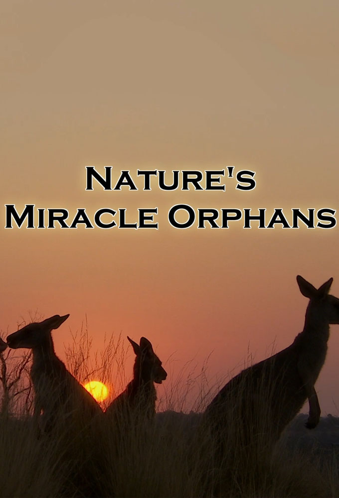 Nature s Miracle Orphans