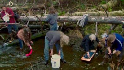 les brown génération alaska saison 2