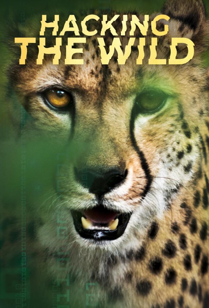 Hacking the Wild (S01E02)